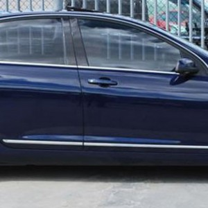 Holden Commodore Chrome Door Mould Kit